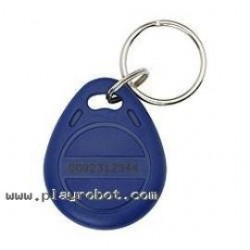 RFID Blue Eye Key Fob Tag