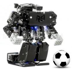 阿Q_人型機器人(具PID控制與精準\位置記憶)(Email詢價)