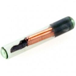 RFID 玻璃膠囊 (125kHz)
